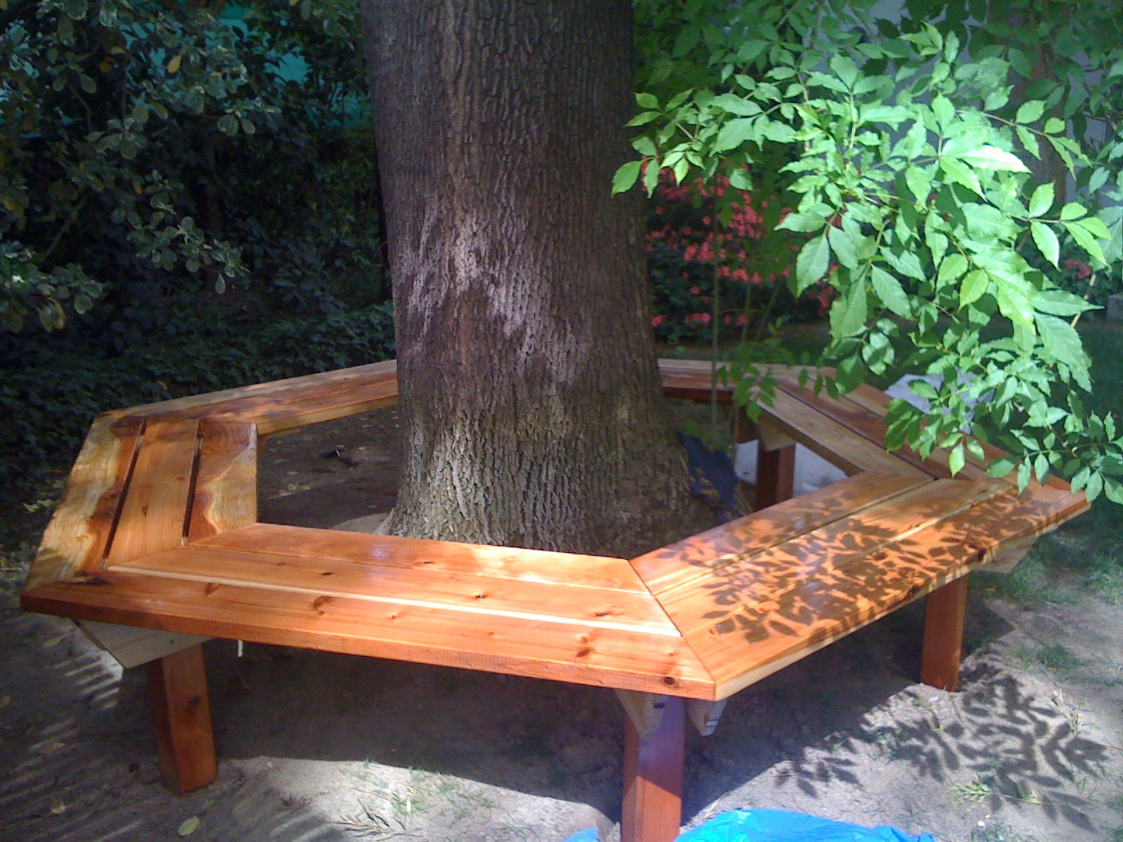 The Tree Bench Was Another Present For Folks Its Just A Simple Hexagon That Fits Around An Old In My Pas Back Yard
